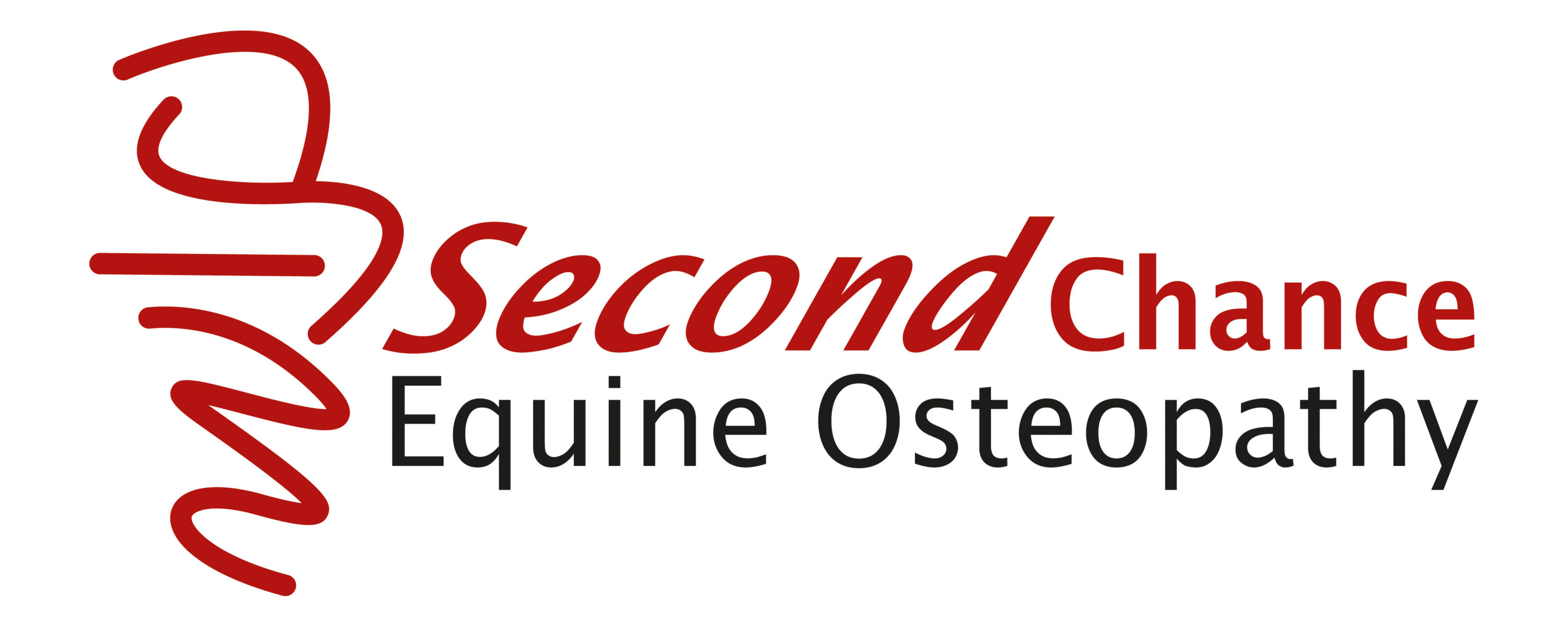 Second Chance Equine Osteopathy